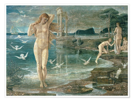 Premium poster the renaissance of venus
