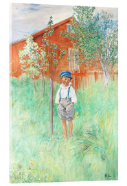Acrylic print  Esbjorn by his own apple tree - Carl Larsson