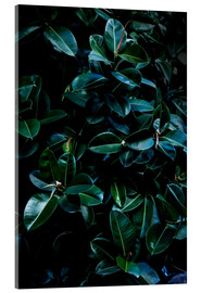 Acrylic glass  Dark Leaves 4 - Mareike Böhmer Photography