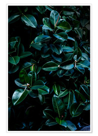 Premium poster Dark Leaves 4