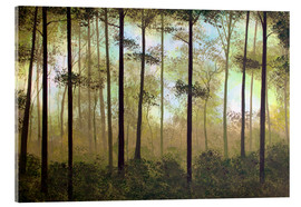Acrylic glass  FOREST MORNING - Herb Dickinson