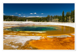 Premium poster  Beauty Pool, Yellowstone National Park - Circumnavigation