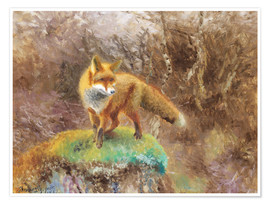 Premium poster Fox in an autumn landscape