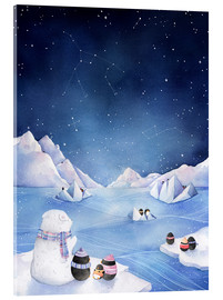 Acrylic print  Stars of the Antarctic - Rebecca Richards