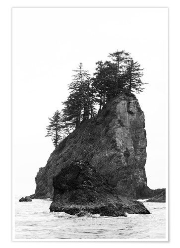 Premium poster Rocks at Second Beach in Olympic National Park, USA