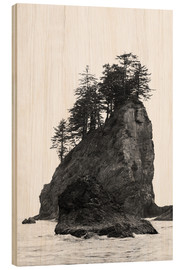 Wood print  Rocks at Second Beach in Olympic National Park, USA - Peter Wey