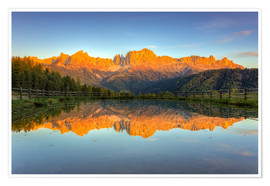 Premium poster Alpenglow on the rose garden in the Dolomites in South Tyrol