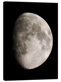 Canvas print  Moon (Telescopic View) - Ulrich Beinert