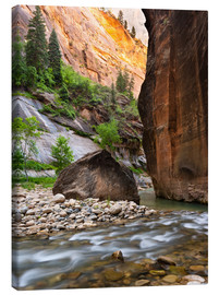 Canvas  The Narrows, Zion National Park, Utah, USA - Markus Ulrich