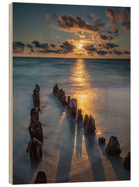 Wood  Groyne on Sylt with sunset - Heiko Mundel