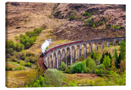 Reemt Peters-Hein - Glenfinnan viaduct with incoming train