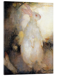 Acrylic print  White rabbit, standing - Jan Mankes