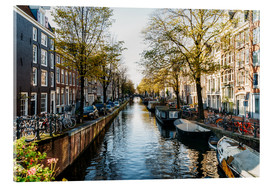 Acrylic print  Beautiful Autumn In Amsterdam City - Radu Bercan