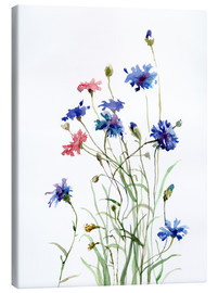 Canvas print  Cornflowers watercolor - Verbrugge Watercolor
