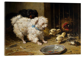 Acrylic glass  A Bichon Frise and a King Charles Spaniel - Henriette Ronner-Knip