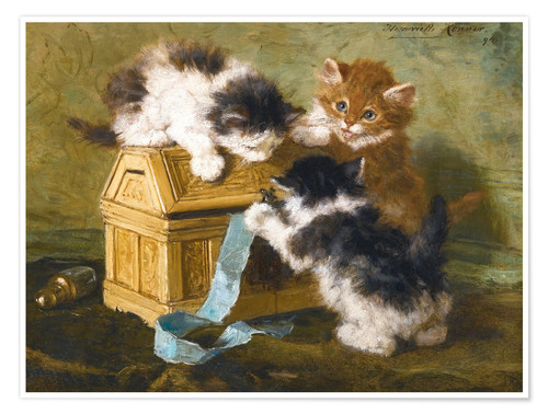 Premium poster Three Kittens with a casket
