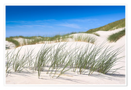 Premium poster Gone with the wind - in the dunes of Sylt