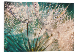 Foam board print  Dandelion dropper dream - Julia Delgado