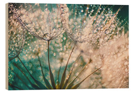 Wood print  Dandelion dropper dream - Julia Delgado