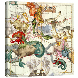 Canvas print  Celestial Atlas, plate 2 - Ignace Gaston Pardies