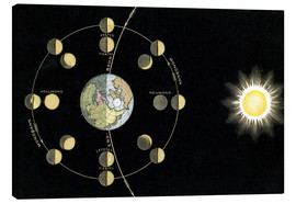 Canvas  Origin of the moon phases