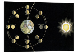 Forex  Origin of the moon phases