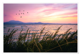 Premium poster Lake Garda Sunrise