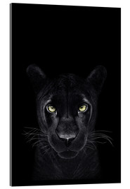 Acrylic print  Black Panther on a black ground II - Valeriya Korenkova