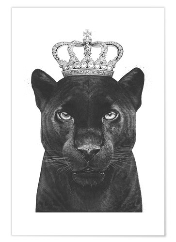 Premium poster The King panthers