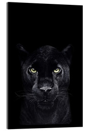 Acrylic glass  Black panther on black - Valeriya Korenkova