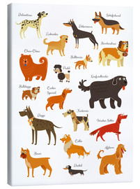 Canvas print  Dogs in all sizes - Kidz Collection