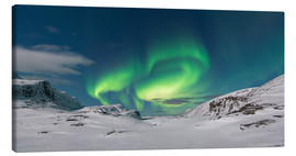 Canvas print  Northern Lights at the North Cape - Bjoern Alicke