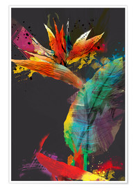 Premium poster Bird of paradise flower