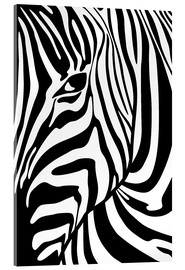 Acrylic glass  Black And White Zebra Portrait - Radu Bercan
