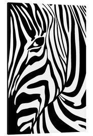 Alu-Dibond  Black And White Zebra Portrait - Radu Bercan