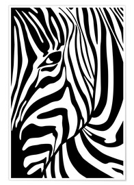 Premium poster  Black And White Zebra Portrait - Radu Bercan