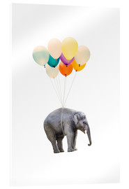 Acrylic print  Elephant with colorful balloons - Radu Bercan