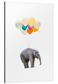 Alu-Dibond  Elephant with colorful balloons - Radu Bercan