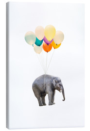 Canvas print  Elephant with colorful balloons - Radu Bercan