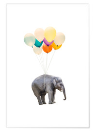 Premium poster  Elephant with colorful balloons - Radu Bercan