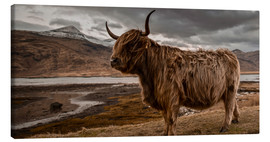 Canvas  Highland cattle - Art Couture