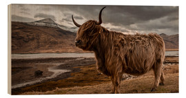 Wood print  Highland cattle - Art Couture