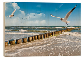 Wood print  Seagulls, Sylt - Art Couture
