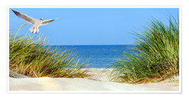 Premium poster  Sand dune, Baltic Sea - Art Couture