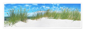 Premium poster Panorama of Dunes, Baltic Sea