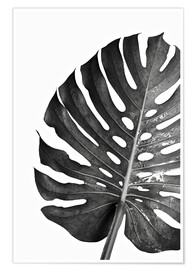 Art Couture - Black monstera 03